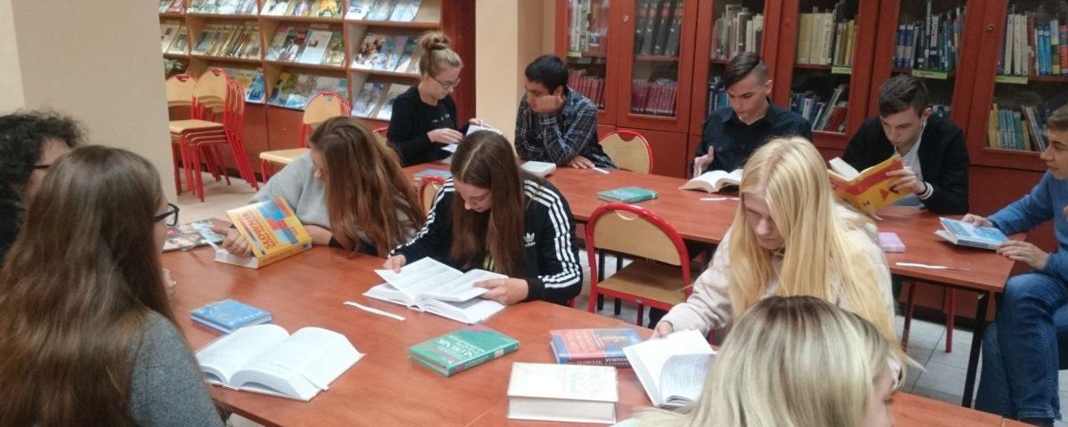 Biblioteka ZSO